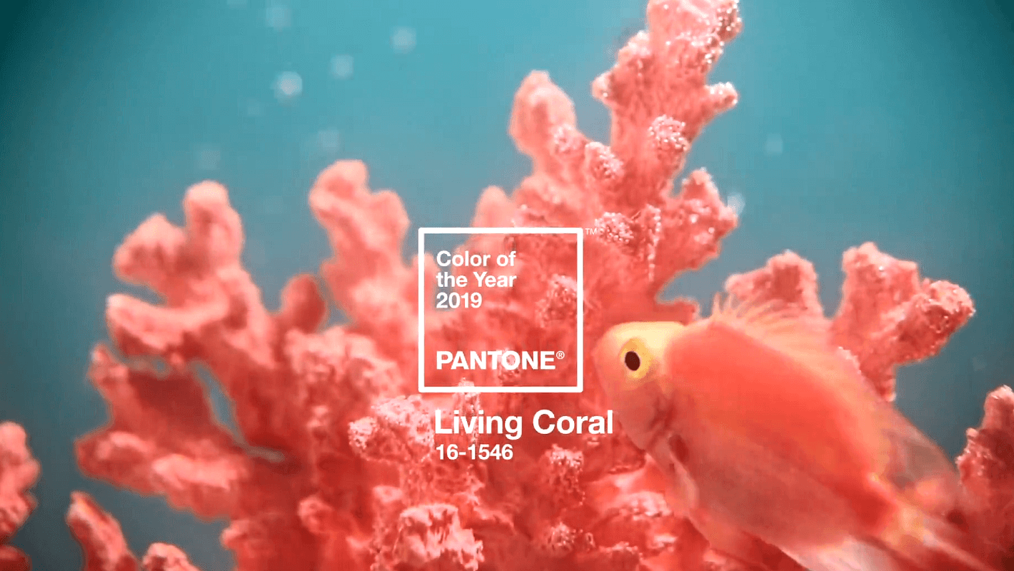 Fkstories Living Coral: Όλα Όσα Πρέπει Να Ξέρετε Για Το Χρώμα Της Νέας Χρονιάς Fk Stories Viral  χρώμα της χρονιάς κοραλί pantone living coral fashion trends fashion color of the year